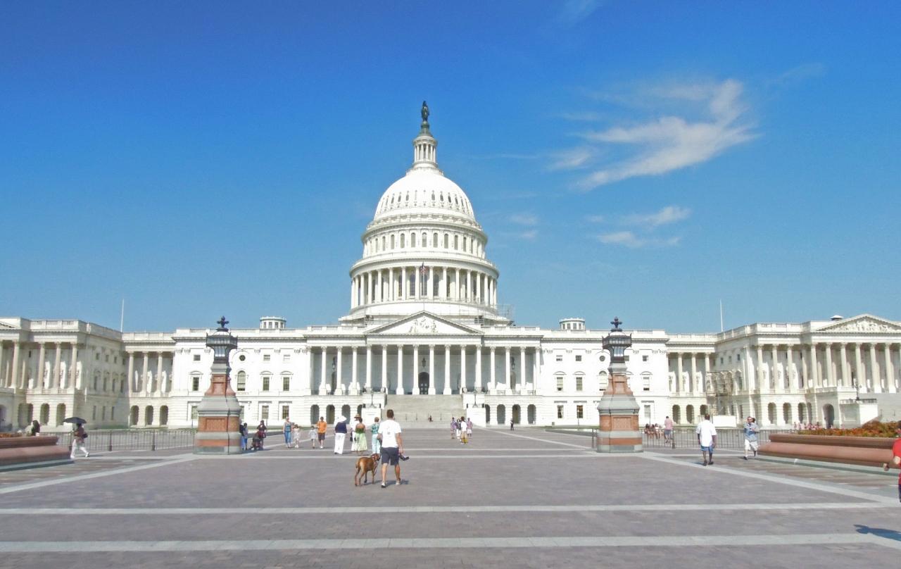 「アメリカ国会議事堂」の画像検索結果