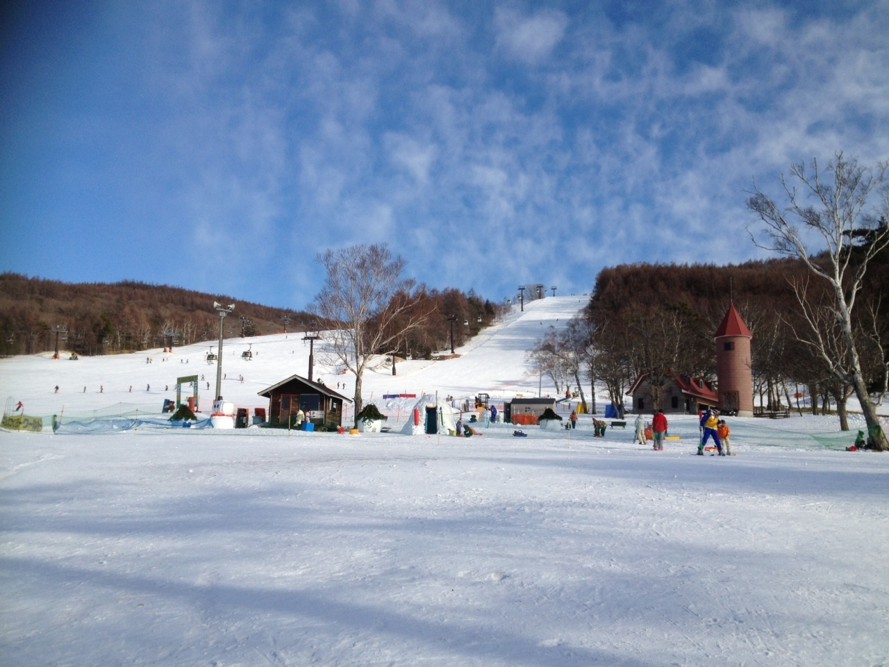 白樺 高原 国際 スキー 場