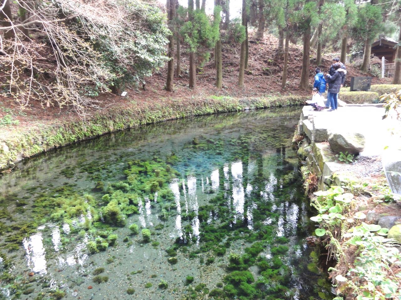 水源 熊本 白川