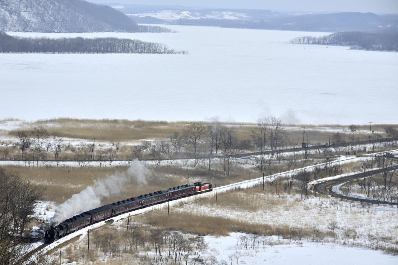 冬の北海道、道東・道央地方を巡る旅 ~霧中の釧路湿原に訪れてみた~