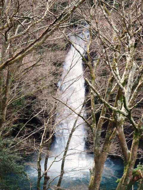 日本の旅 東海地方を歩く 静岡県伊豆市の天城桜の里公園、伊豆市立湯ケ島小学校、浄蓮の滝(じょうれんのたき)周辺