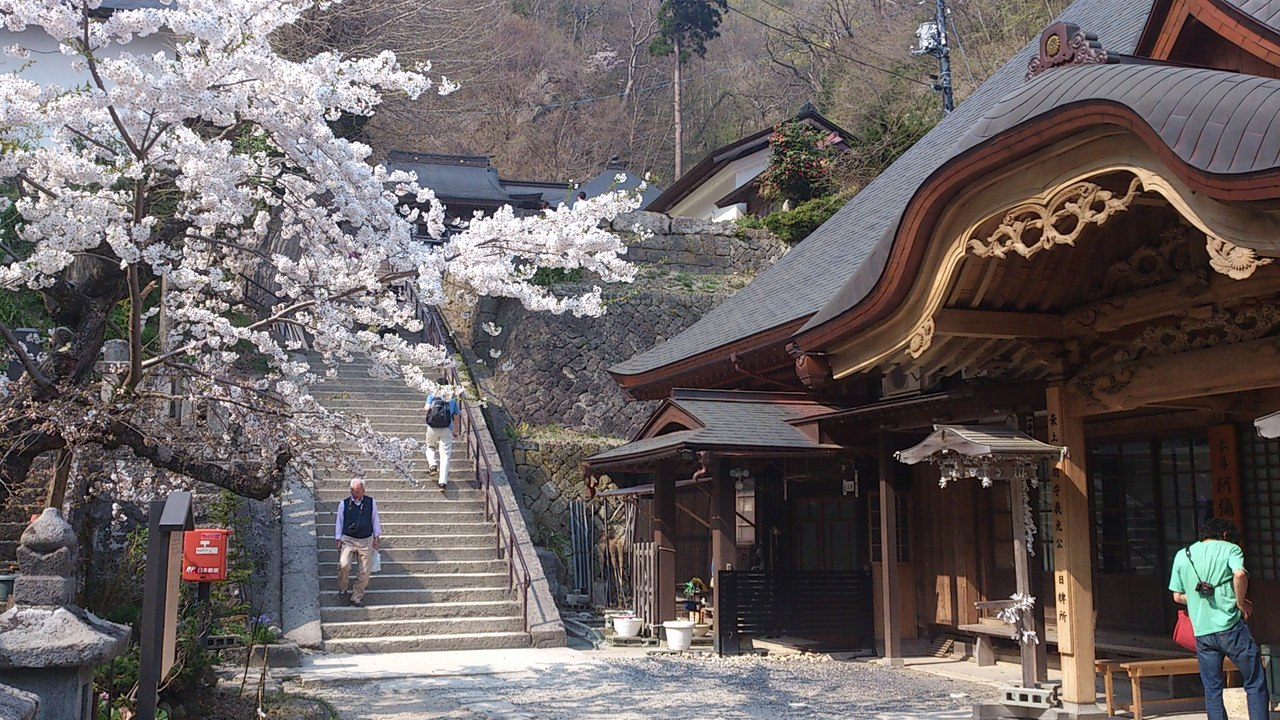 「立石寺 桜」的圖片搜尋結果