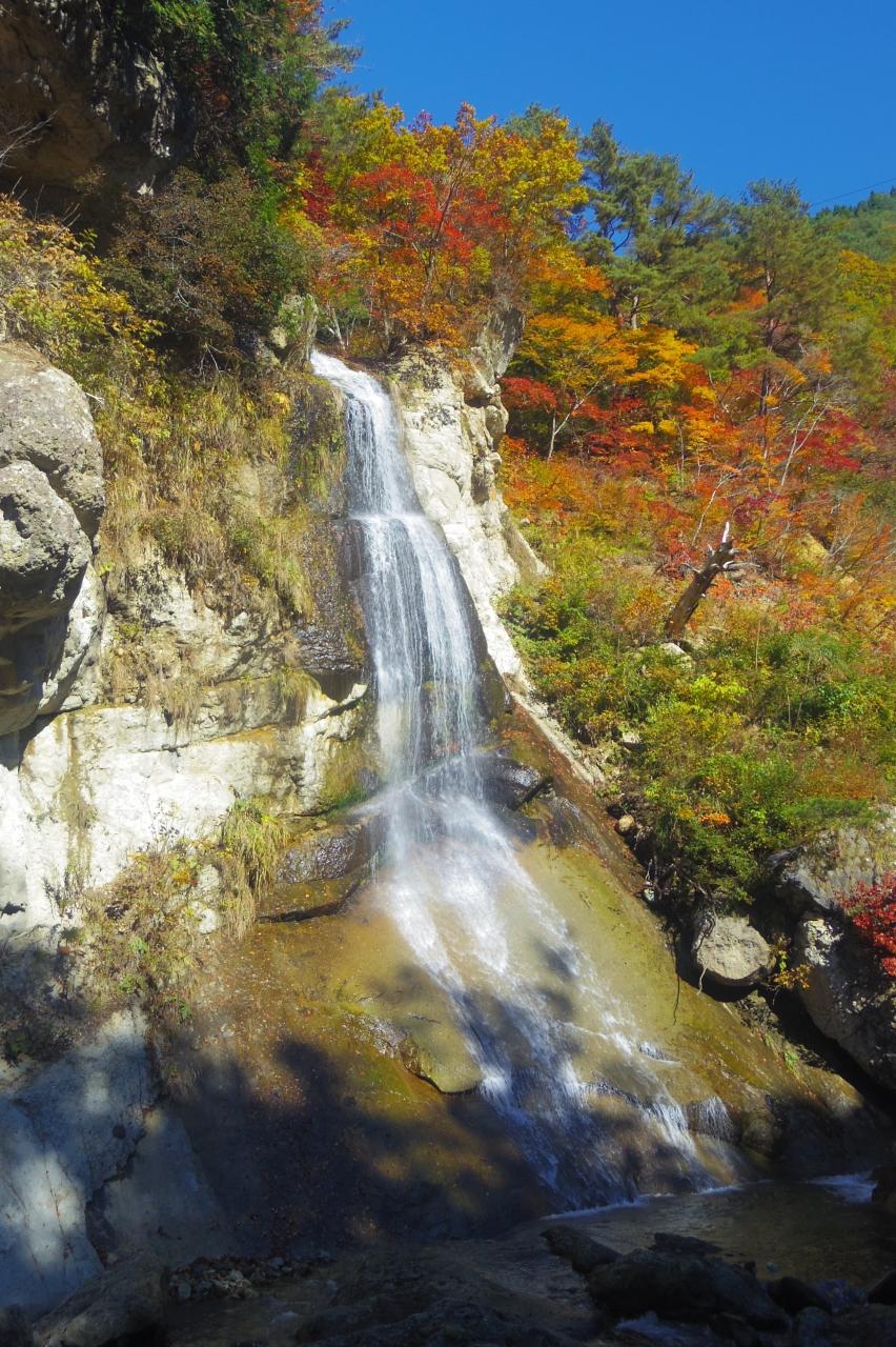 面白すぎる紅葉の面白山紅葉川渓...