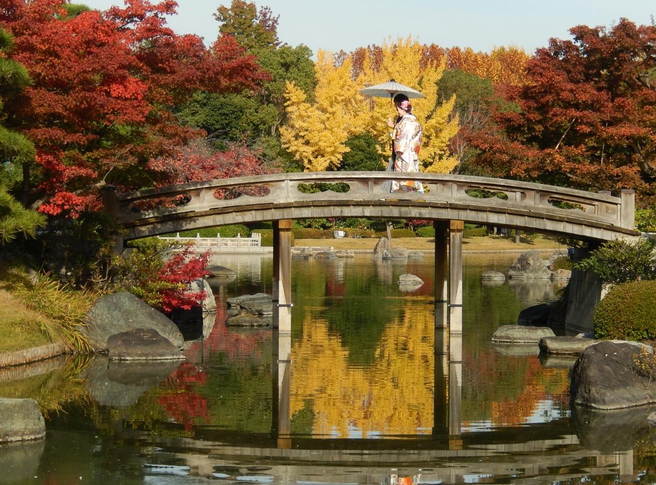 本日はお日柄もよく。。。夢想』 大仙公園 日本庭園の紅葉 』堺(大阪 ...