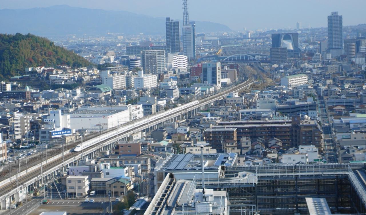 天然南鮪 と 流れ鮨、静岡市はい...
