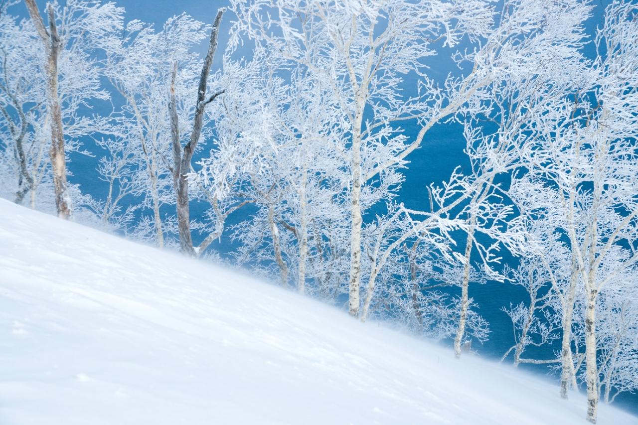 吹雪 猛 【危険】走行中に周囲が見えない吹雪に見舞われたらどうする?