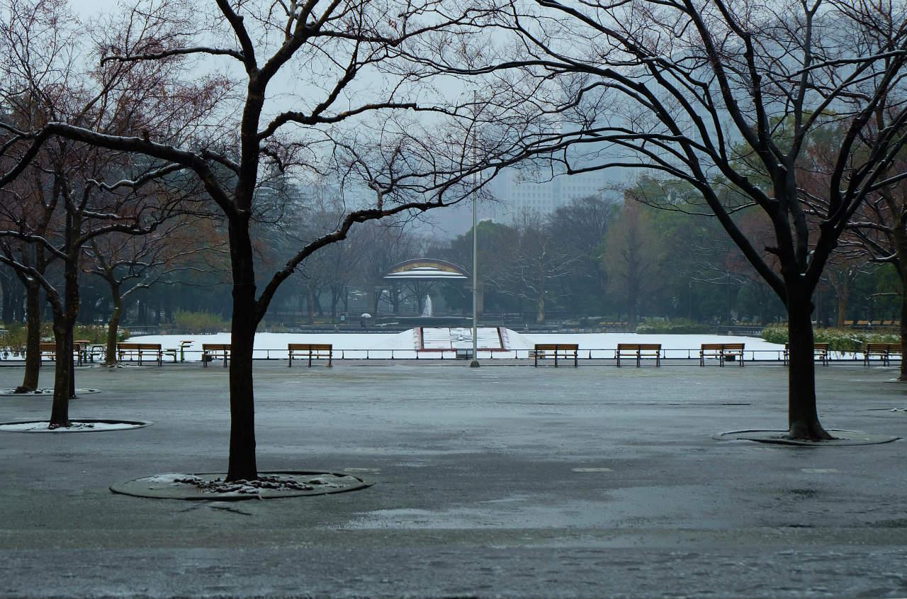 東京に 雪が降る 天気予報 待っていました 雪景色が写せる<br