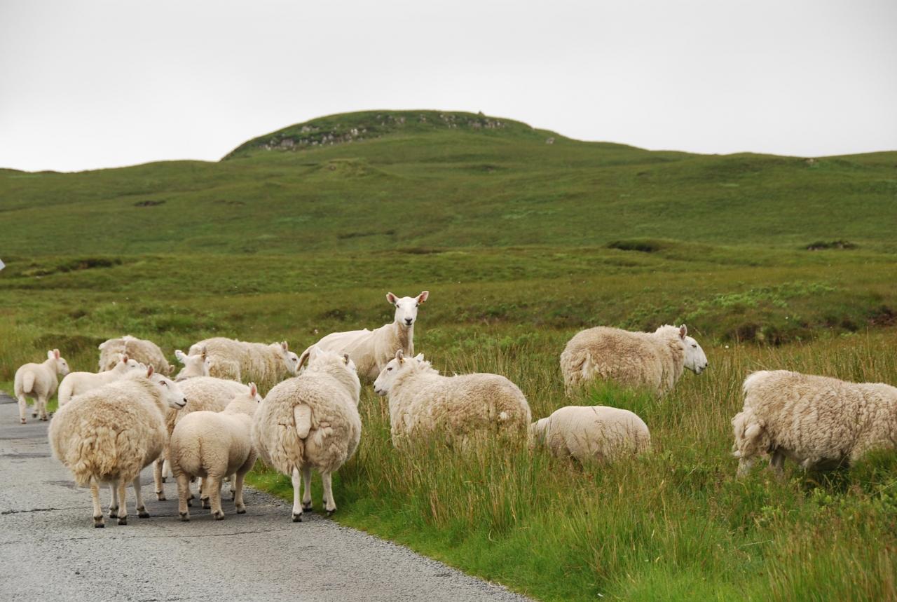 スコットランド北部+スカイ島を回るドライブの旅