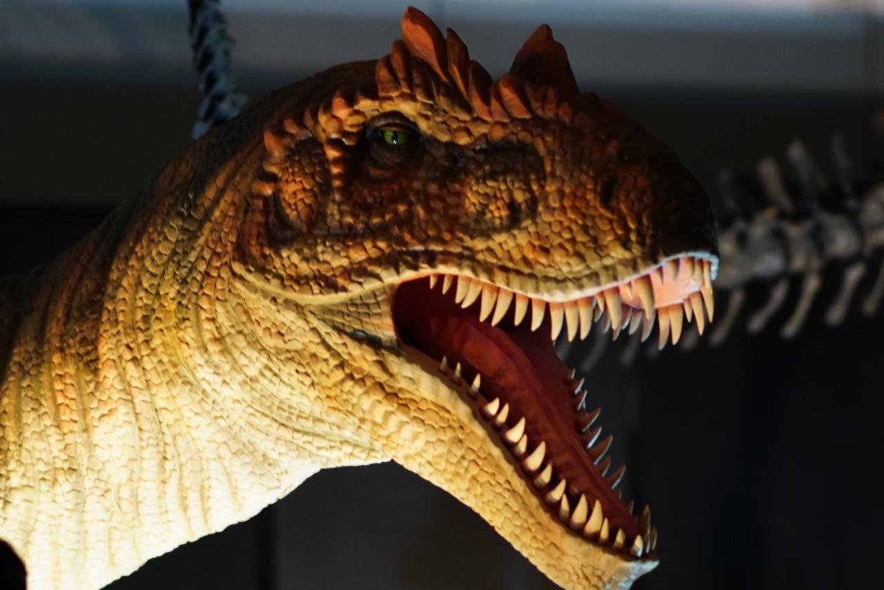 横浜恐竜博2015 に出向く