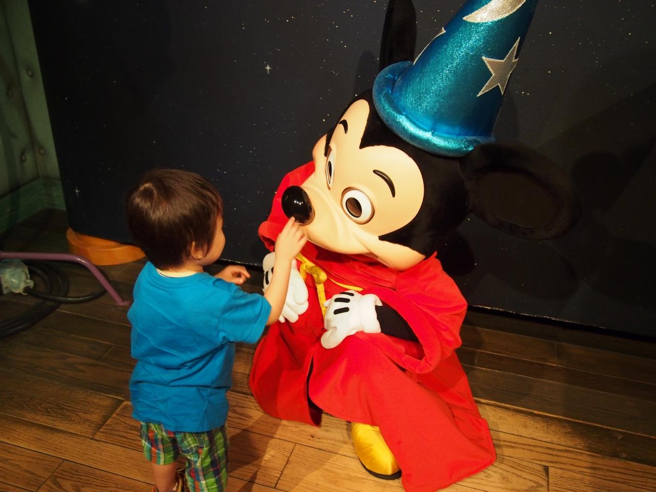 2015年 ディズニーランド』東京ディズニーリゾート(千葉県)の旅行記