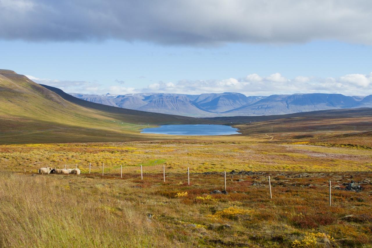 ぐるり一周! 絶景アイスランド8日間② クヴァンムスタンギ > アークレイリ > ミーバトン
