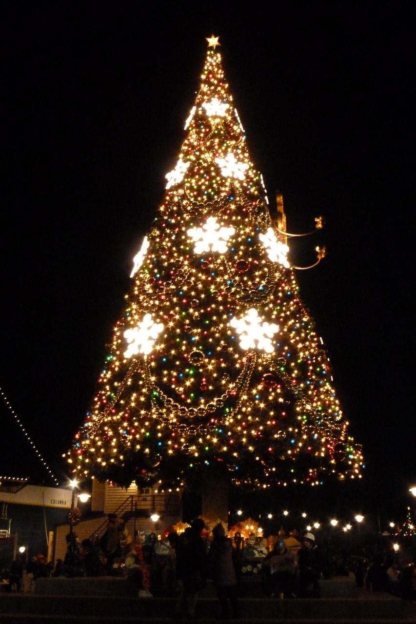 2013年12月24日 東京ディズニーリゾート クリスマスを楽しん