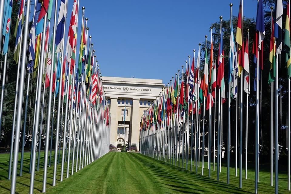 スイス・国連の隣の穴場は植物園...