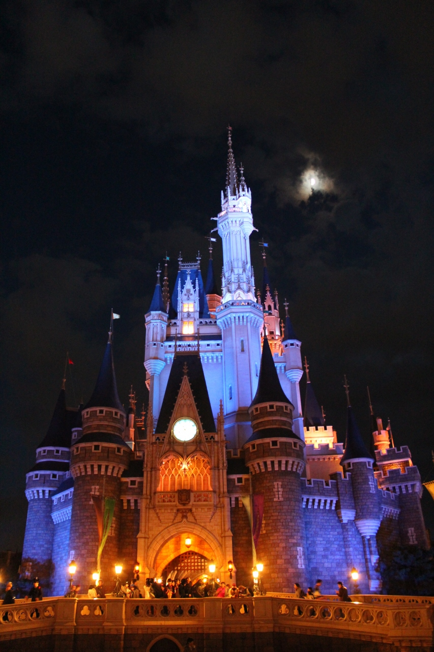 家族でクリスマスディズニーリゾートデビュー』東京ディズニーリゾート