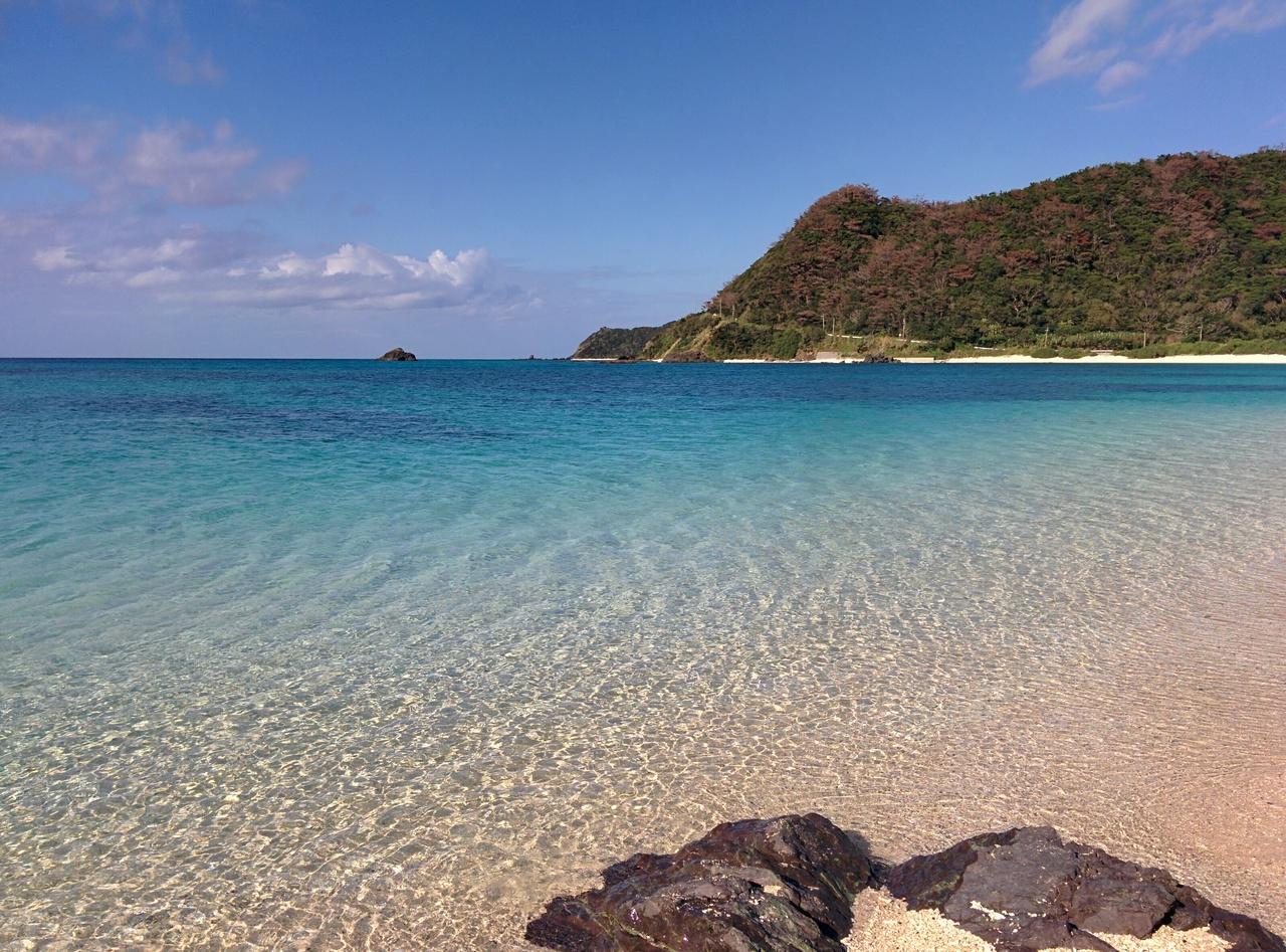 東洋のガラパゴス。冬の奄美大島...