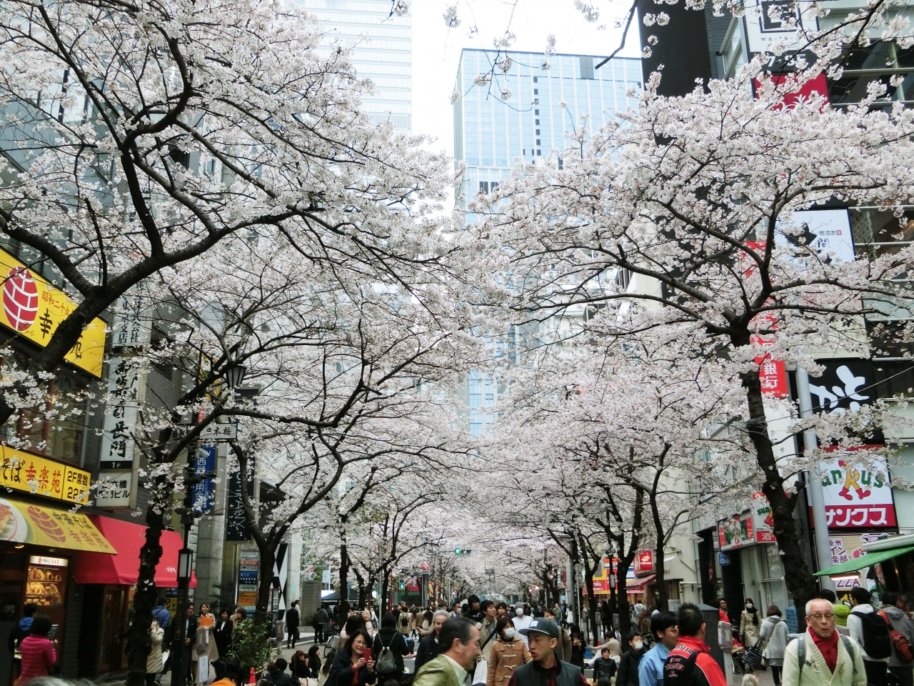 東京快適散歩 ⑭ ー 日本橋界隈を...