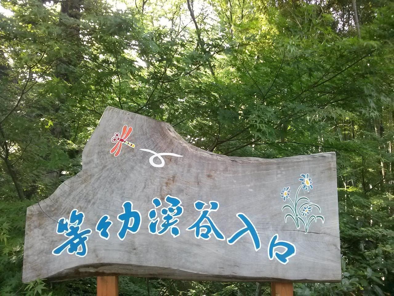 等々力いく - JapaneseClass.jp