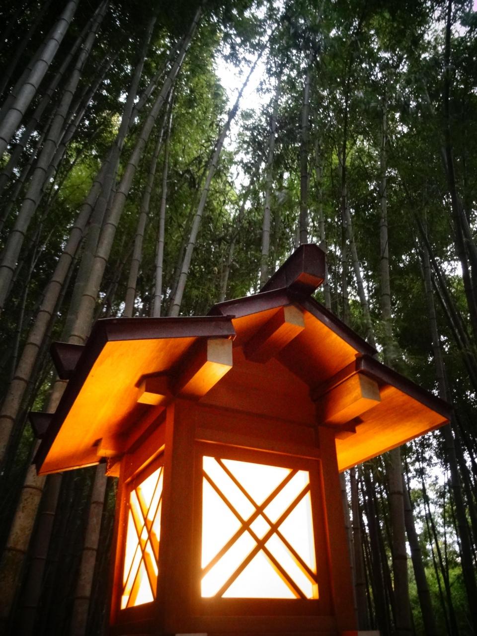 奈良さんぽ:日本最古の神社、大神神社/薬水の湧く狭井神社へ