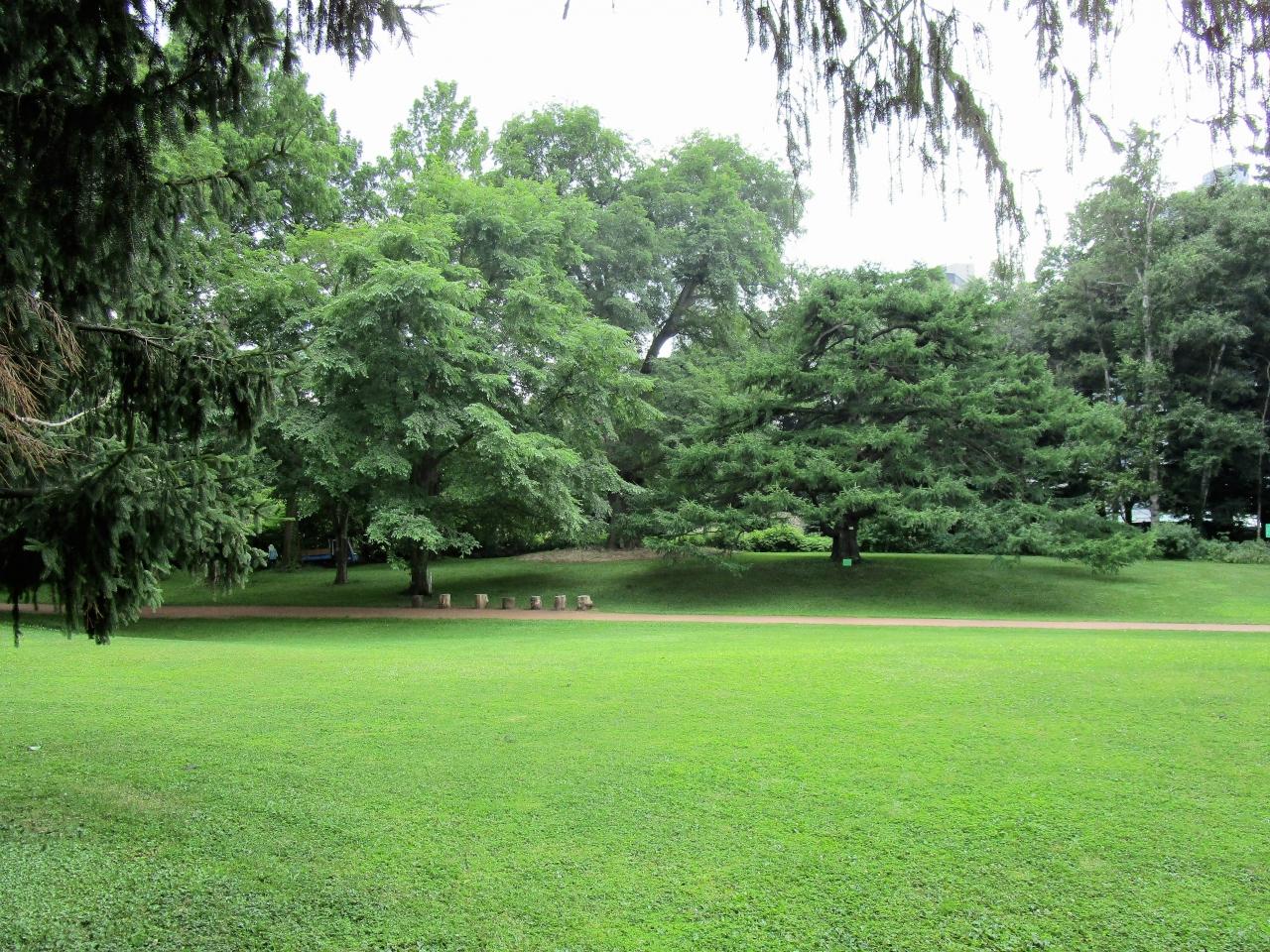 都会のオアシス、約4千種類の植物が育成されている植物園