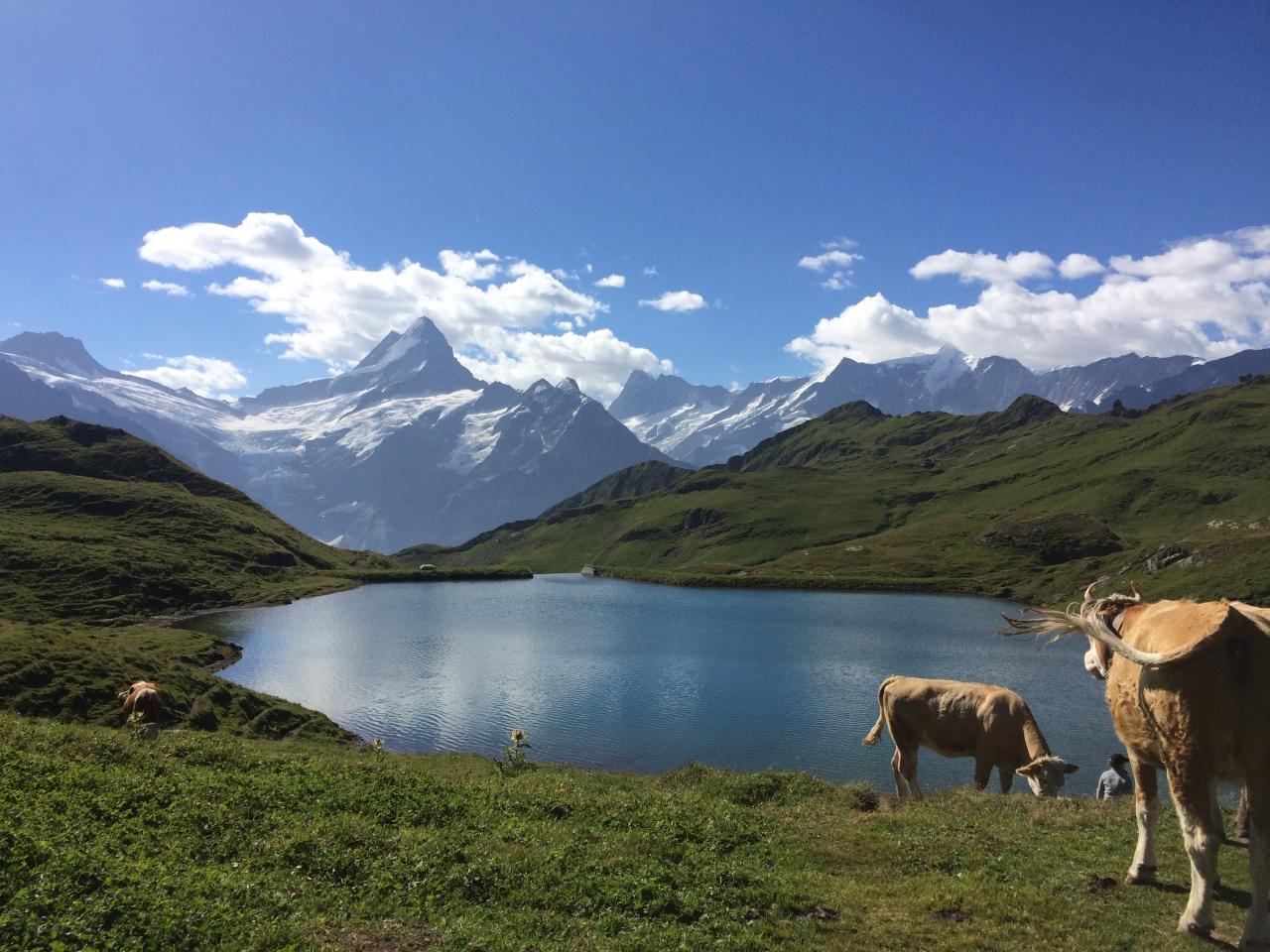 スイスの山の一覧 - List of hig...