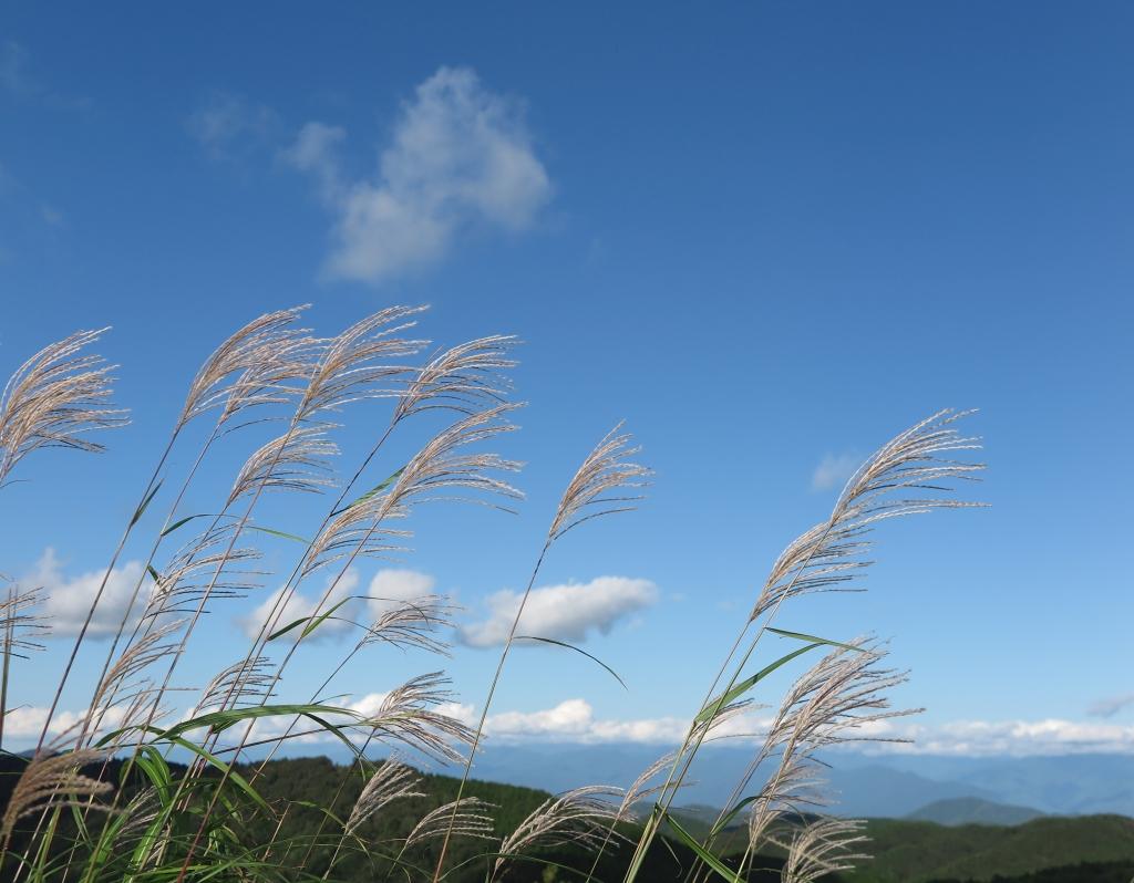 天気 茶臼山