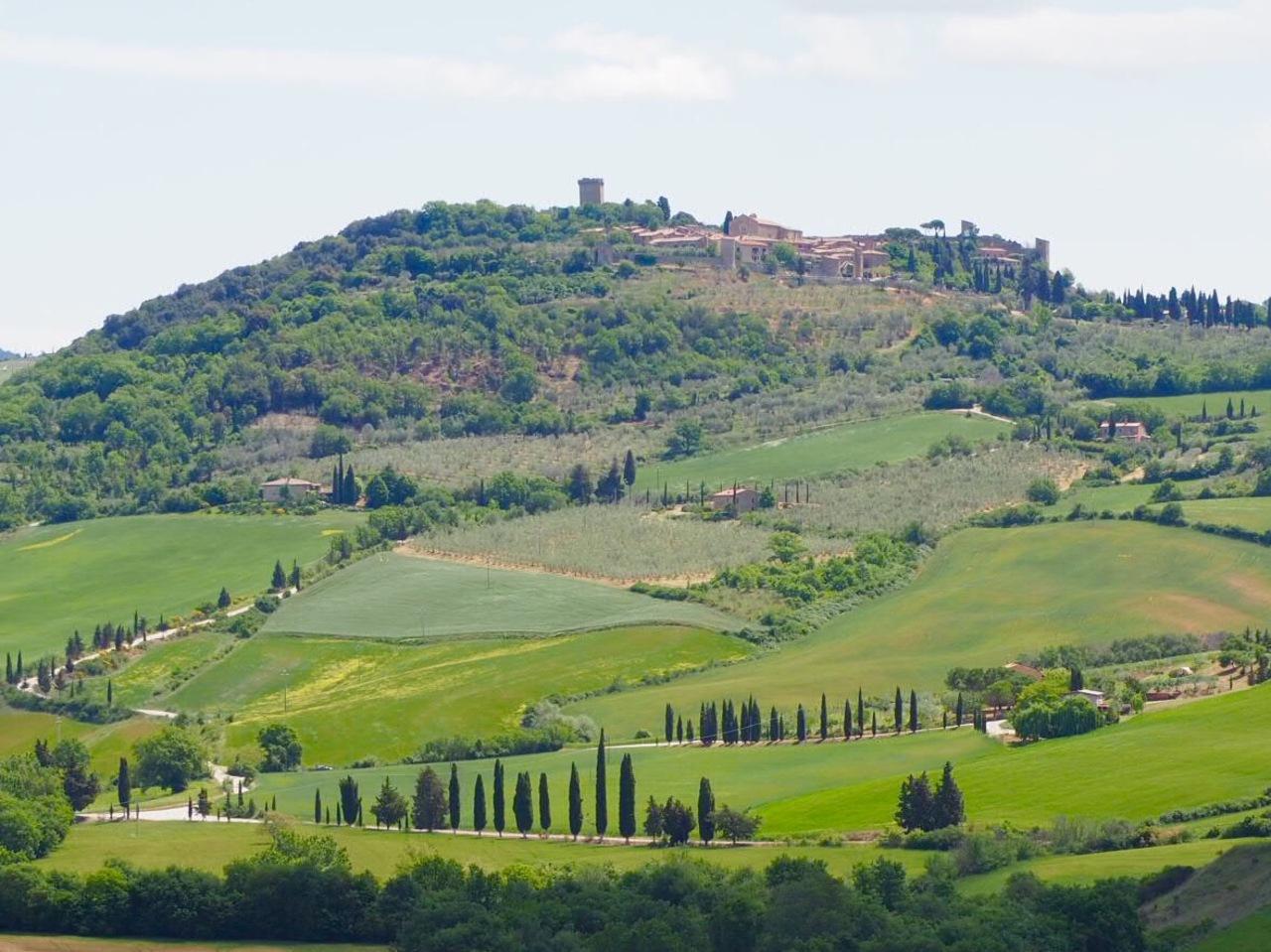 駆け足で巡った春のイタリア**...