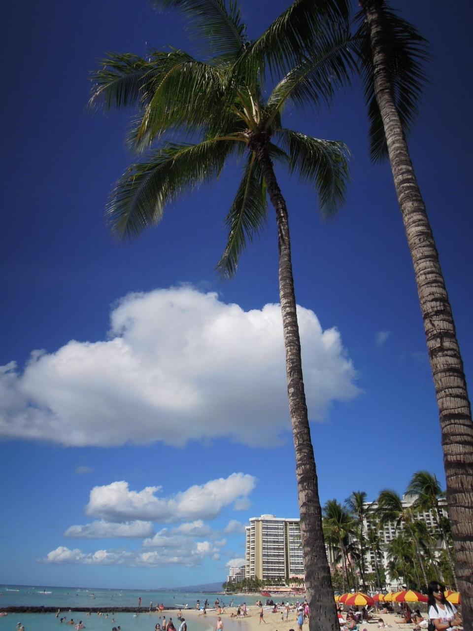 還暦夫婦ハワイに行く』オアフ島...