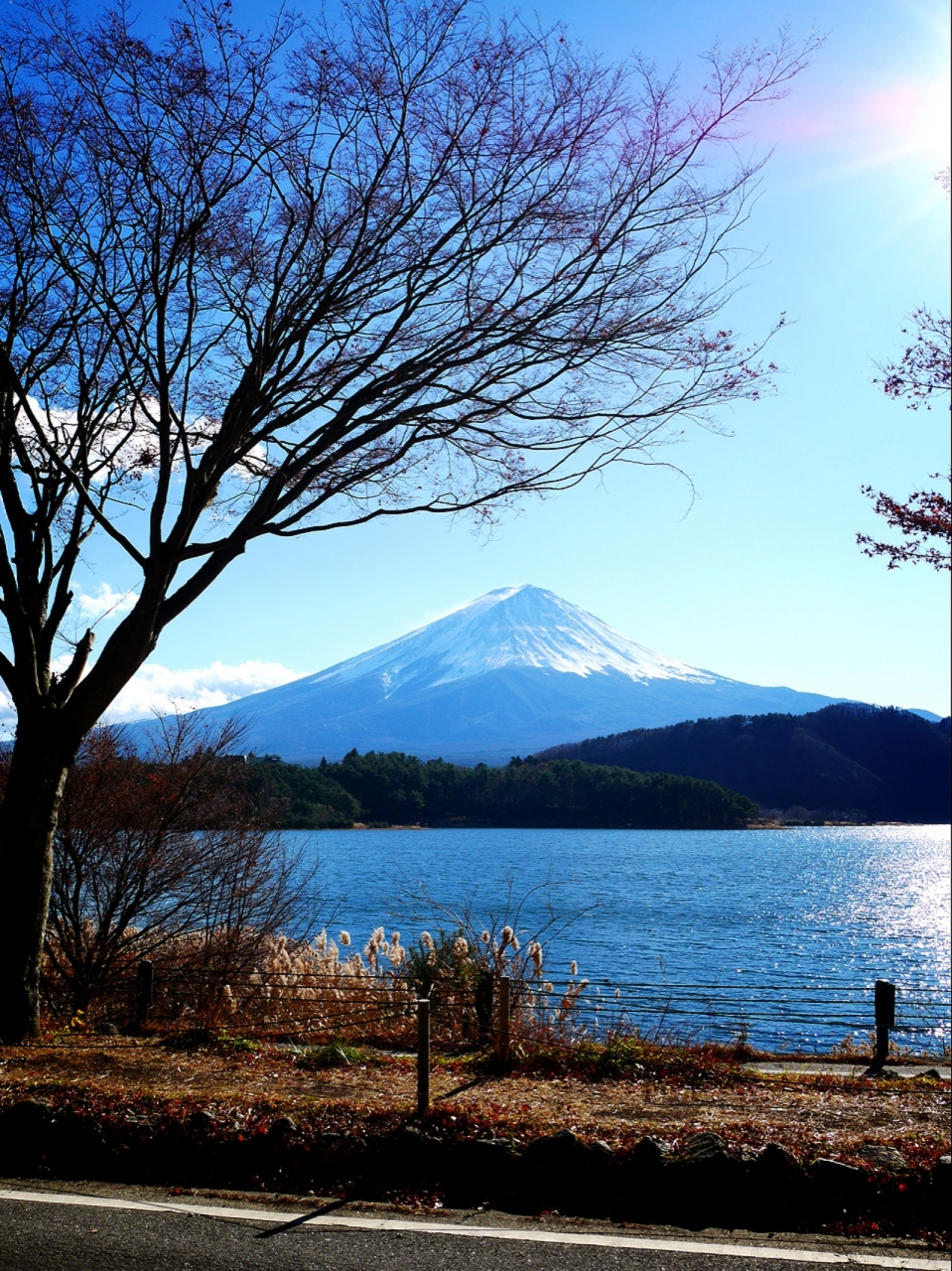別荘 河口湖