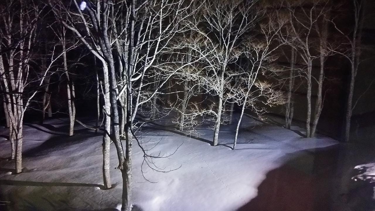 温泉 天気 池の平 スキー 場