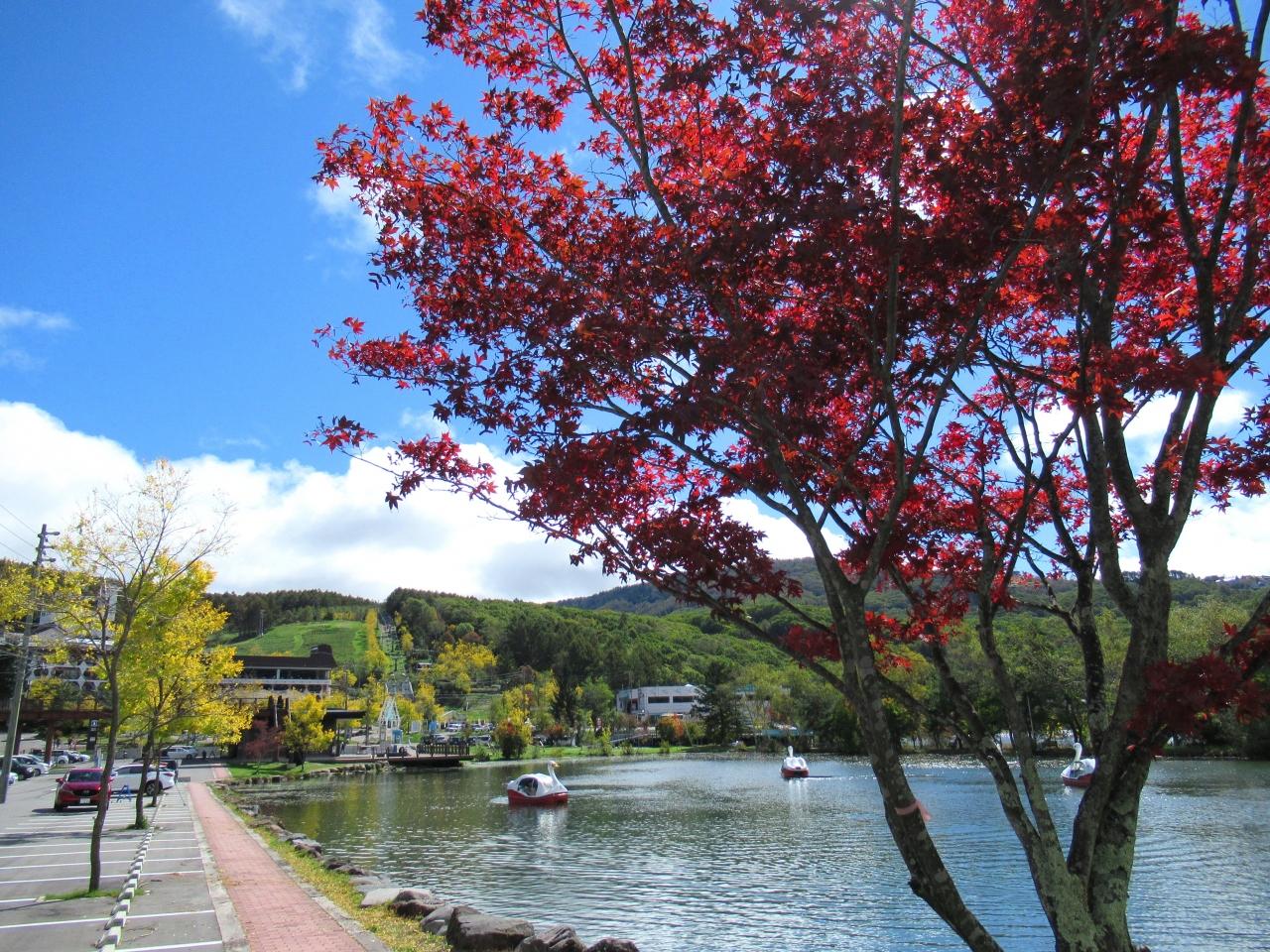 秋 色づき始めた白樺湖と諏訪湖から望む富士 vip御用達のお店