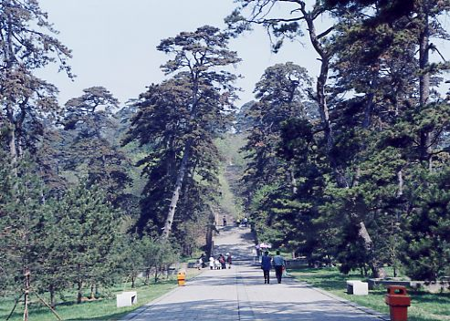 東陵(太祖ヌルハチ夫妻の墓)の参道