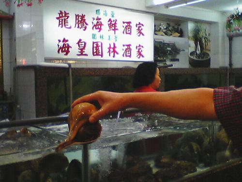 最近、人気な鯉魚門<br />魚屋で魚介類を選び、レストランで料理するスタイルである。<br />料金を良く確認しないと、えらく高いモノにつく。<br />「アサヒガニ」含めて頼んだら、3人で17,000円くらいになった....