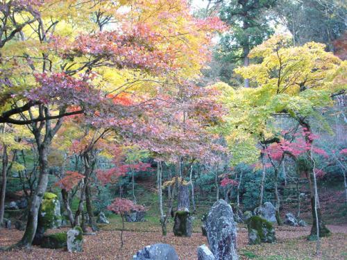 立派な庭園と紅葉が綺麗でした。<br />