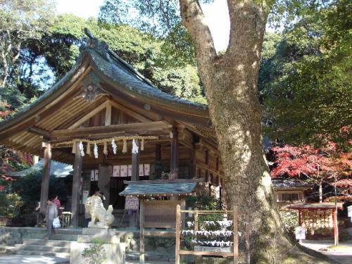 天満宮を後にして、紅葉の名所である竈門神社へ。2km程度だし、天気も良いし、ということで歩いていきましたが、ずっと登り道だったので疲れました。<br />