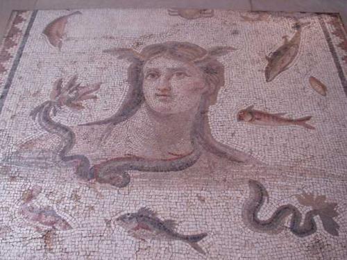 アンティオーク・モザイク<br /><br />ここに展示されたモザイクは、1400年前、アンティオークと周辺地域ダフネの、豪奢な邸宅の床に敷き詰められていた。これらの古代ローマの都市は、現在のトルコとシリアの国境付近に位置している。<br /><br />アンティオークのほとんど全ての市民の家に、少なくとも1つのモザイク床があった。豊かな市民は、多くのモザイク床を作らせた。石で出来ているモザイク床は、掃除が楽で、暑い夏にはその上で、涼しく過ごすことが出来た。広い面積が、神話やアレゴリー、花鳥や動物の図柄で装飾された。<br /><br />モザイクには、様々な色の天然石を数センチ単位に切り刻み、セメントの上に並べて作られる。青、赤、オレンジ、黄色のガラスが、一部使われることもあった。図柄は、職人が、当時人気のあったローマの壁画から、モザイク用にデザインしたもの。<br />
