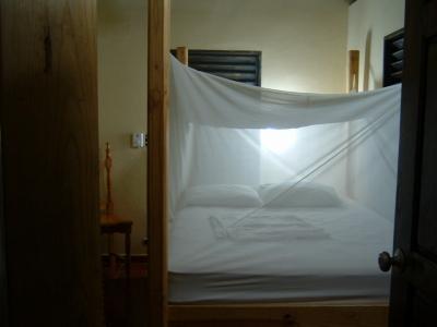 本日のお宿。ドミニカ共和国では蚊帳は必須アイテム。でも、蚊帳の中にいるとなんだか安心感があって落ち着ける。昔は日本もこんな感じだったんだろうな。ここはもちろん電気なんて通ってないけど、発電機があるので電気も水もあります。