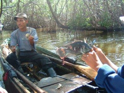 このラグーンはマングローブの森があってそこでかにや淡水魚がたくさん取れるようでそれで生計を立てている人たちもたくさんいます。