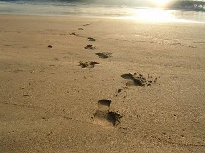 ビーチを一人で散策