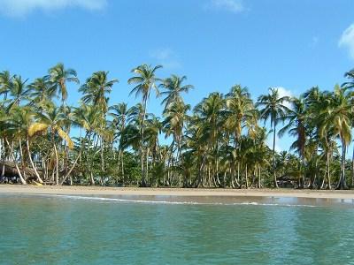 翌朝、船で出発。船から見えたビーチ。