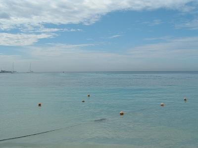 ドミニカ共和国の海は大きく分けてカリブ海側と大西洋に別れるけど、同じカリブや大西洋でも少し離れるとがらっと海の雰囲気が変わっておもしろい。<br />ここBAYAHIBEももう少し言ったところにある有名リゾートDOMINIXと全然海の色が違う。BAYAHIBEはパステルカラー。やさしい感じの海です。