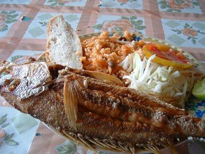 鯨の写真!・・・ではなくて、本日のお昼ご飯。<br /><br />魚のフライにMORO(ドミニカ共和国でよく食べられているご飯)にサラダ<br />おいしかった!