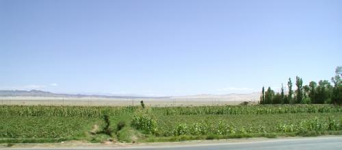 この辺りの景色は、祁連山と鳴沙山が繋がって見えます。<br />微かにですが、真ん中あたりの遠くに、雪をかぶった祁連山脈が見えています。<br /><br />綺麗になった空港路を、空港間近で右折すると莫高窟まであと15kmです。<br />