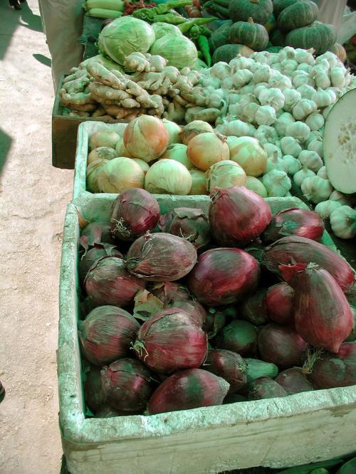 我々が好きな変わった形の野菜などもここで買います。<br />これは紫色のタマネギですが、長細いんですね。
