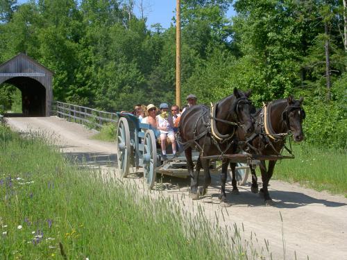村内には馬車が走っていて、ちょっとつかれたときには出口まで連れて行ってくれます。