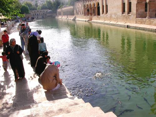 聖なる魚の池にて。女性の服装は、長袖の上にコートを着たり、という人が多く、とても夏とは思えません。