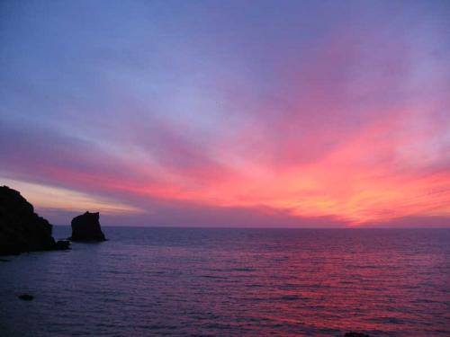 タイトルにも使った写真です。<br />桃岩荘の前から日本海を望みます。<br />この日は夕日こそ見えませんでしたが、見事な夕焼けでした。<br />左に見えるのは礼文三奇岩のひとつ、猫岩です。<br />(9/9)