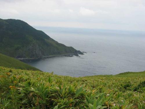 今度は丘を一気に海岸線まで下ります。<br />普段は人がほとんど入らないようで、道なき道を進みます。<br />(9/10)