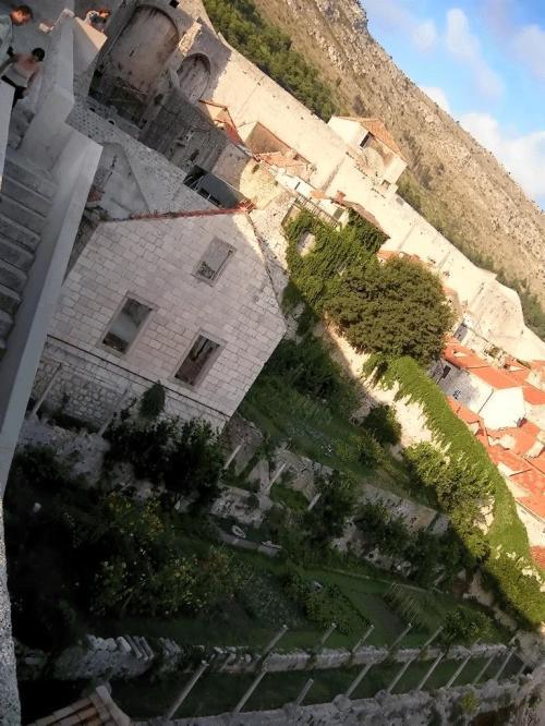 ←◆『途中で見える廃墟と化した・・屋敷と庭♪』<br /><br />ミンチェッタ要塞よりの方には・・廃墟と化した屋根も無い大きな家と、その庭は荒れ果てているのでしょうか?<br />でも、それさえも悲しく美しく見えてしまうんですよ(^_^;<br /><br />「カブト虫さん」の奥さんが「天空の城・ラピュタみたい」と言ったのみ頷けますよね?(^_-)-☆<br /><br />実際にクロアチアに取材に来られて「魔女の宅急便」や「紅の豚」の参考にされたと聞いたことがありますし・・<br /><br />とにかくクロアチアは自然が美しく残されて、かつ過剰にデフォルメされた観光地になってない所が最高なんですよ☆<br /><br />ドブロブニクは、栄華を偲ばせるだけでなく「崩れかけた部分」も含めて・・とても惹かれてしまいました(^○^)/