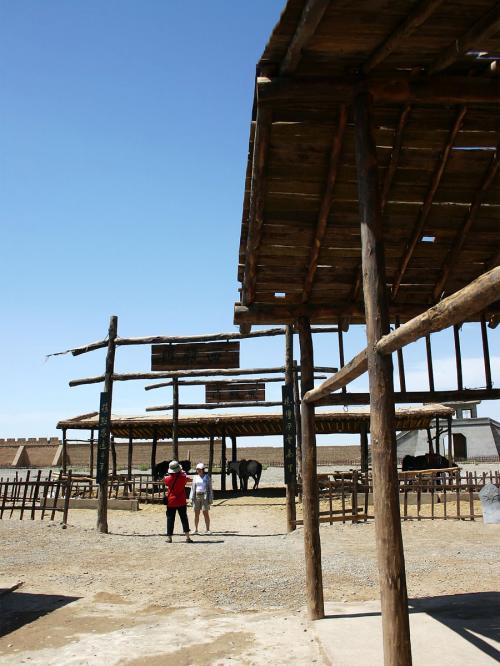馬場。<br />有料で乗馬も楽しめる。<br />でも、普通のツアー観光客には時間がないのでムリ。<br />我々にはお金がないのでムリ・・・?