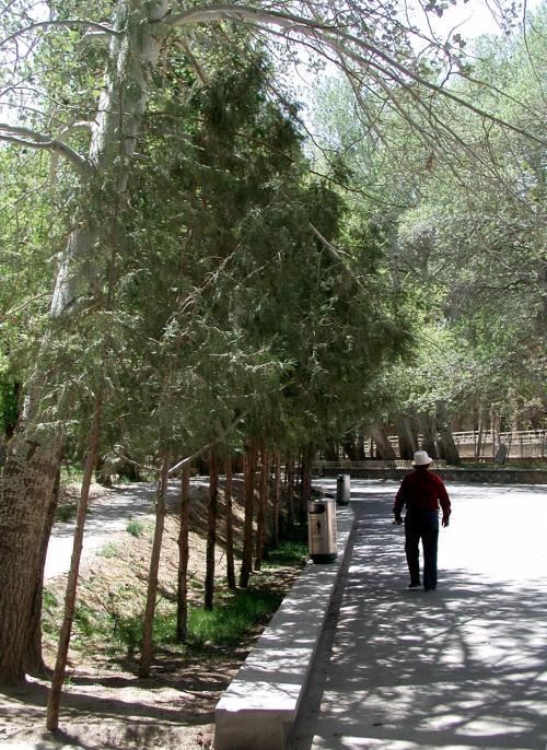 回廊と雑木林の道を歩いて入り口に向かいます。<br />